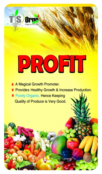 Profit - 500 ML - 15 %