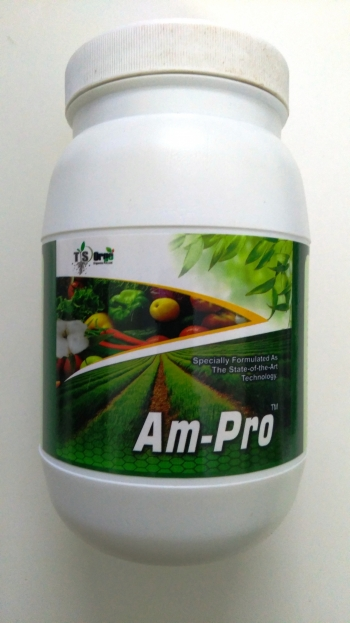 Ampro - Growth Promoter - 1 KG
